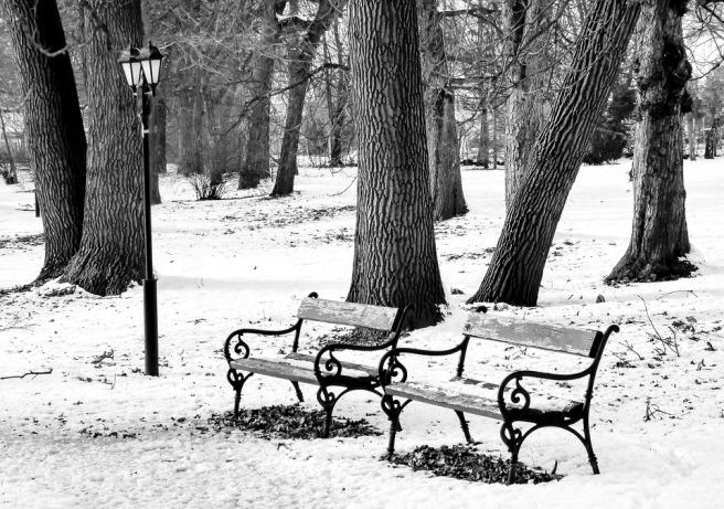 winter-1995198_960_720